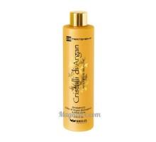 Зволожуючий шампунь для волосся,  250 мл, Brelil Argan